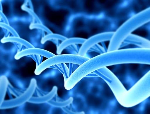 Genetics Laboratory in Dubai - Viafet