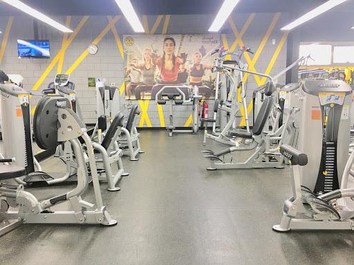 Gold's Gym Fujairah