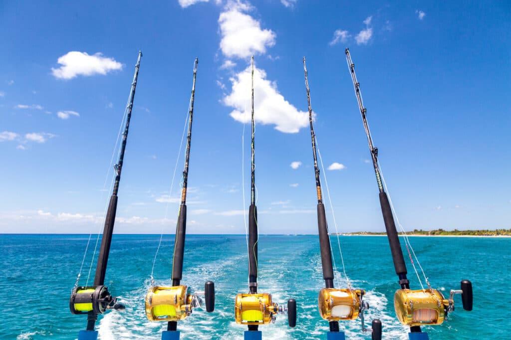 outdoor activities in dubai Fishing