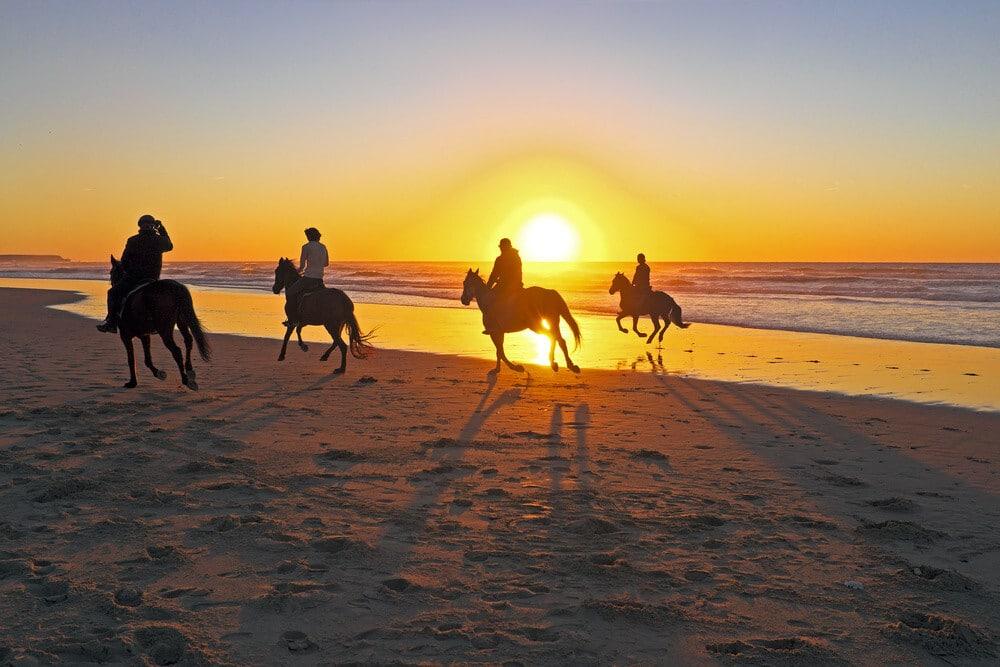 outdoor activities in dubai Horseriding